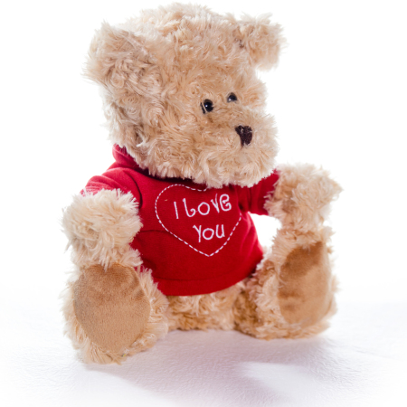 Red Top Teddy